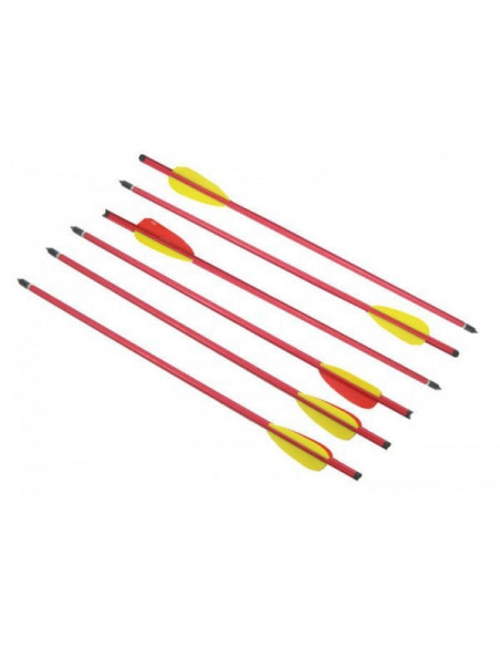 Pack of 6 arrows 14 inches (35.5cm)