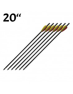 Pack 6 Arrows 20 inch black